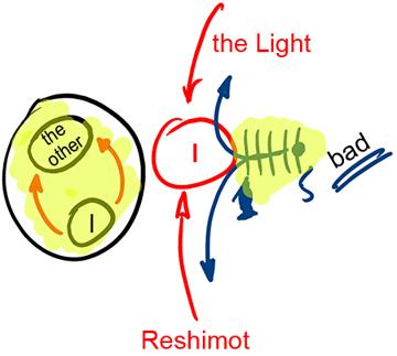 Cuando-la-luz-se-encuentra-con-las-Reshimot